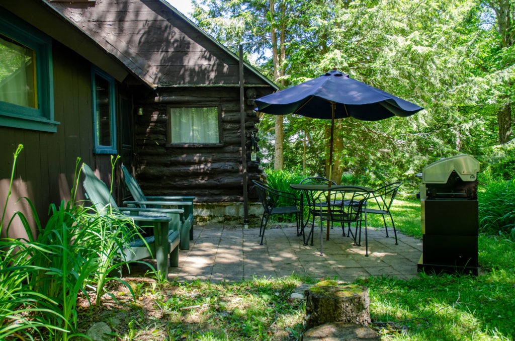 Cole Cabin pond-side patio with propane fired barbecue.