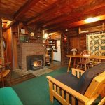 Cabin LR with fireplace woodstove.